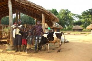 ouganda_credit_WAPA